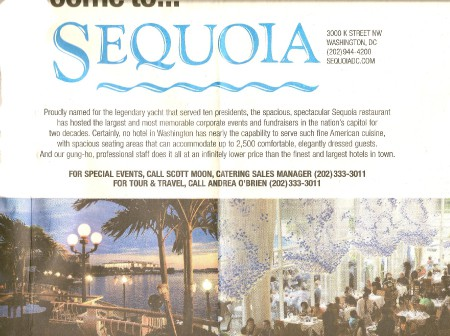 Sequoia Ad_Art Is Everywhere blog