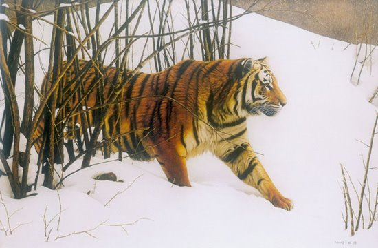 oil tiger painting by Du Hao from Stupendous Art World with Oil Painting blog