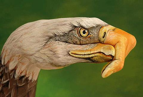 Guido Daniele. Hand painted Eagle.