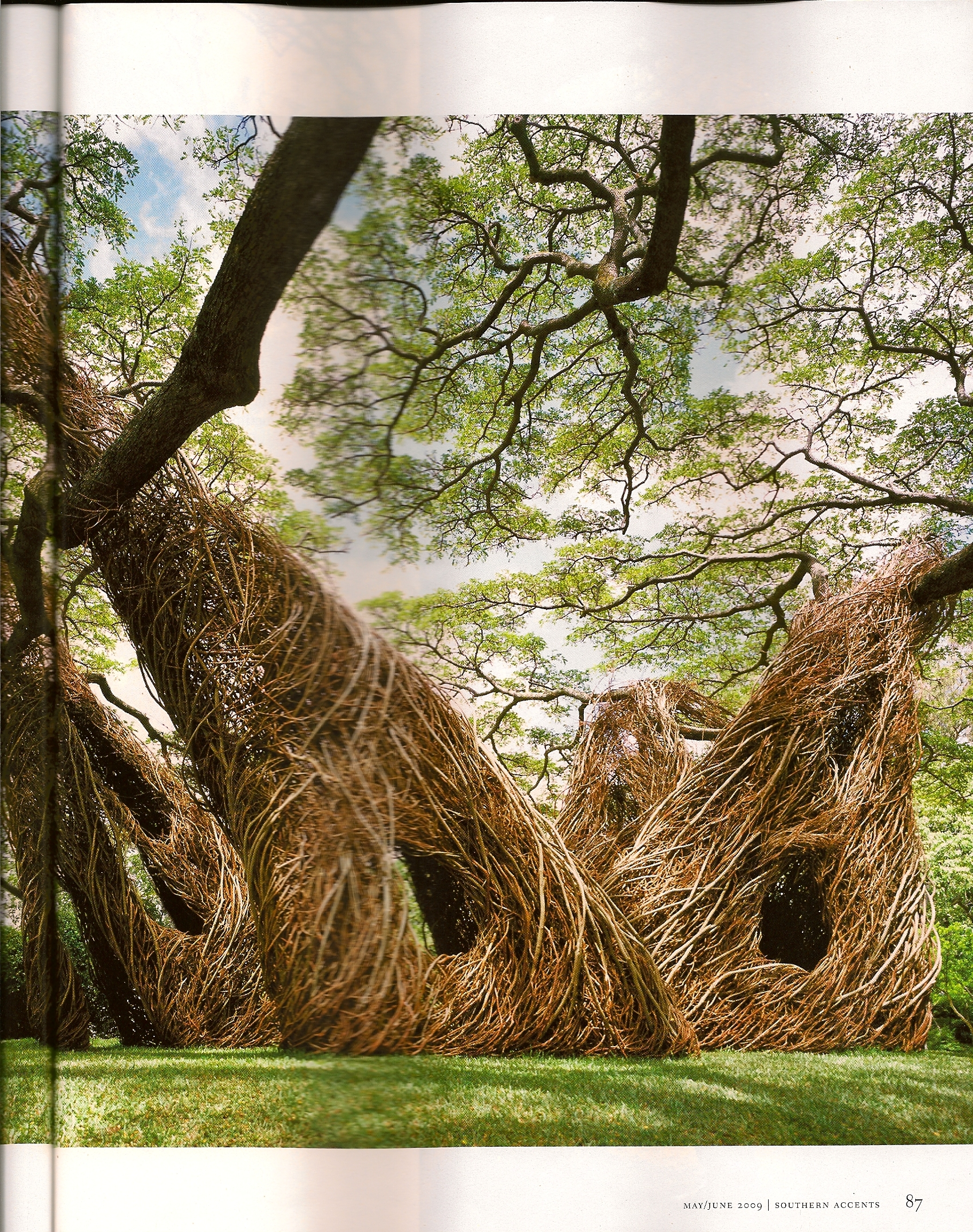 twig-art by Patrick Dougherty via Southern Accents, May/June 2009