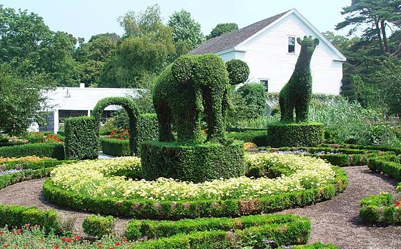 Green Animals photo via the Photo Garden Bee