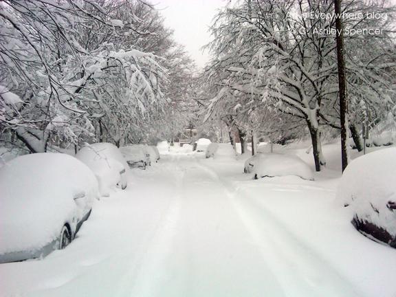 snow2010_street20_blog.ArtIsEverywhere. Photo by Peter Spencer