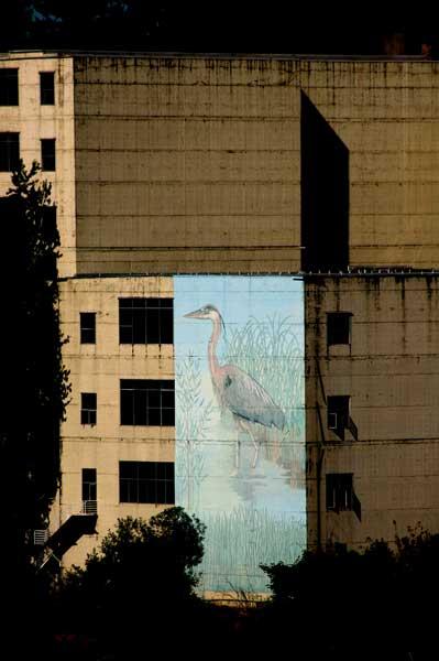 4egret_mural