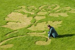 Detail, pattern on St. John Univ Grounds, as seen on Art Is Everywhere