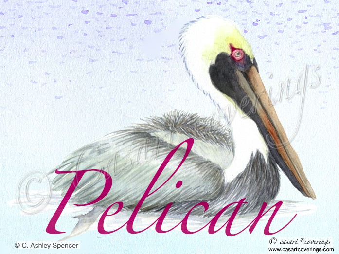 casart_Pelican_wWords2_blog