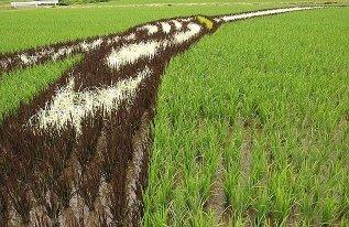 Rice Paddy Mural closeup via coyoteprime-runningcauseicantfly, seen on Art Is Everywhere