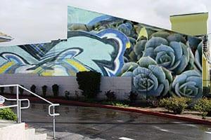 succulent mural_primepickjpg via Pasadena Weekly seen on Art Is Everywhere