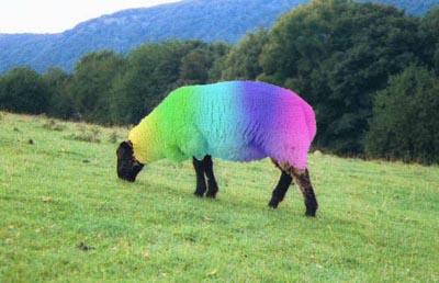 rainbow_sheep via moonbattery seen on Art is Everywhere