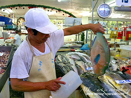 The fish market in Panama_Art Is Everywhere