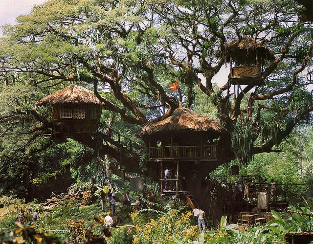 Swiss Family Robinson movie set_AIE