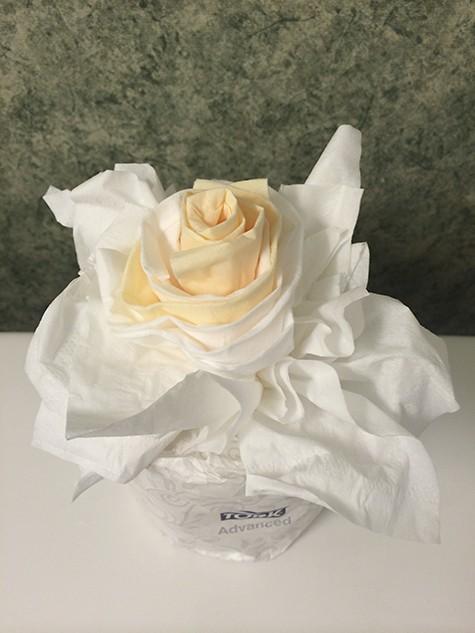 Tissue Rose_2329_AIE
