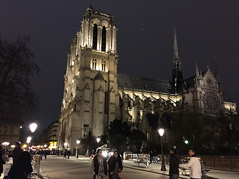 Side view of Notre Dame at night on Art Is Everywhere