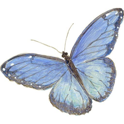 Casart Butterfly Logo2_Art Is Everywhere
