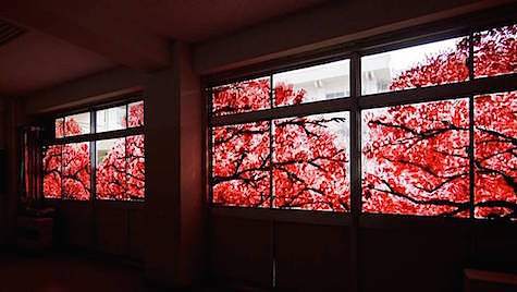 Hand Painted Cherry Blossom photos via Fubiz 2