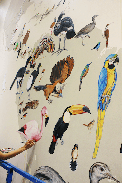 1_Many-birds-painted-by-Jane-Kim_InkDwell_AIE