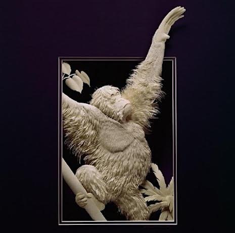 Orangutan_Paper Sculpture Calvin Nichols_AIE