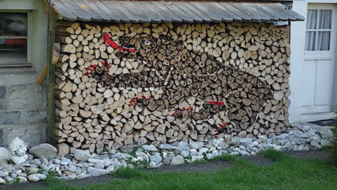 Bear Wood Pile_AIE