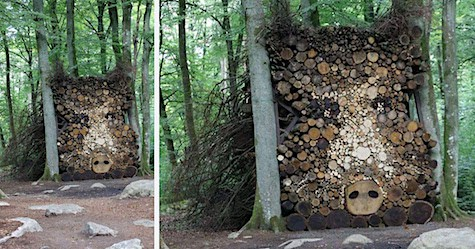 Boar Wood Pile_AIE
