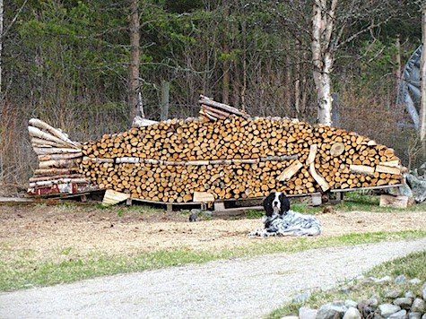 Fish Wood Pile_AIE