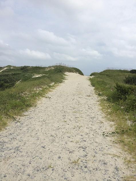 Beach-Path_on Art Is Everywhere