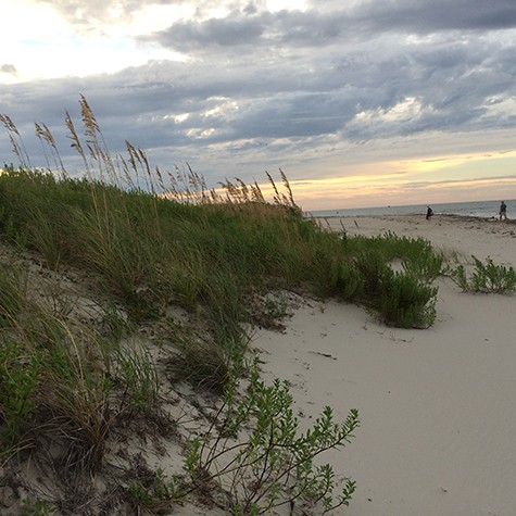 Ocracoke beach dunes_on Art Is Everywhere