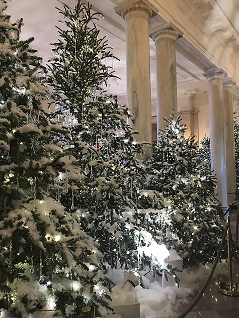 Frosted Trees in the Grand Foyer_AIE