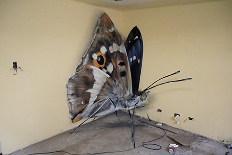 Mantra anamorphic butterfly_AIE