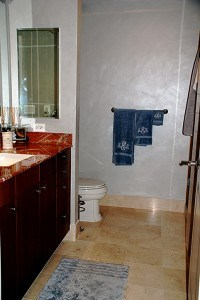 Colorwashed with Siliver Metallic guest bathroom before